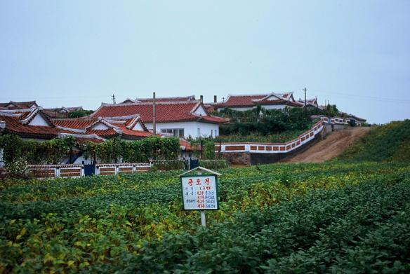 A cooperative farm in the DPRK in September 2011. Image credit Frühtau via Flickr.